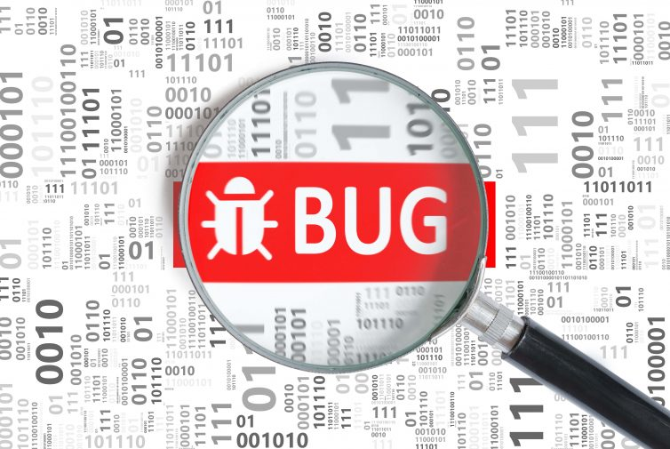 bug audit